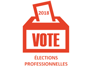 Elections pro 2018